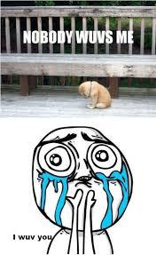 love cute adorable meme wuv punkyskunk • via Relatably.com