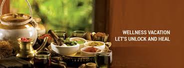 <b>Vedic</b> Village Spa Resort - Wellness Resort in India, Luxury Spa ...