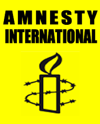 Image result for amnesty international logo