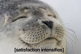 Satisfied Seal - Imgur via Relatably.com