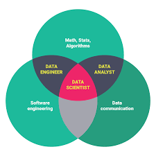 data science career paths different roles in the industry data science roles from springboard
