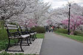 Parque Branch Brook