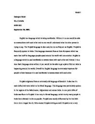 the punjabi and english language  alevel english  marked by  pagezoom in