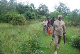 photo essay from one of our sunderban travels selims we always have to do the forest walks forest guards carrying guns thankfully never had to use it during any of the times i have been there