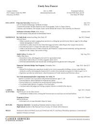 examples of resumes printable job applications and app on 93 outstanding mock job application examples of resumes