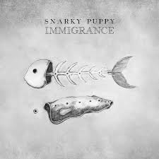 Music - Snarky Puppy