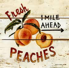 Image result for south carolina peaches