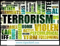 ideas about essay on terrorism on pinterest  law one day  essay on terrorism