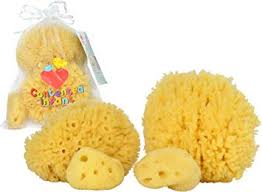 Real Sea Sponges for Babies - 4 Pk Bath Care Set ... - Amazon.com