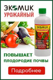 <b>Фитофтороз</b> помидоров: народные методы борьбы с фитофторой