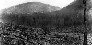 <b>The</b> 1910 Fires - Forest History Society