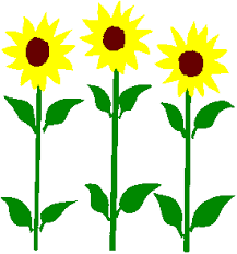 Image result for sunflower clipart