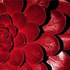 red: лучшие изображения (57)   Crystals, Antique perfume bottles и ...