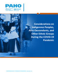 Considerations on Indigenous Peoples, <b>Afro</b>-Descendants, and ...