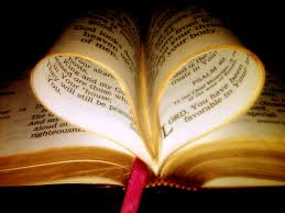Image result for bible pictures