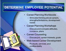 career development career development learning objectives explain 15 determine employee potential career