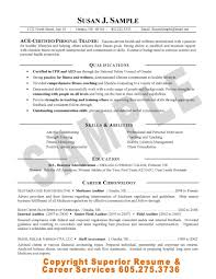 sample career objective internal auditor resume templates sample career objective internal auditor resume templates professional cv format