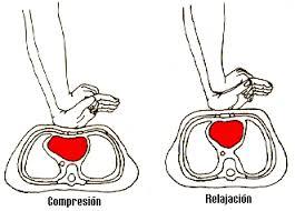Resultado de imagen de masaje cardiaco externo en adulto