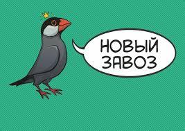 Товары BizarreBook Рязань - комиксы и атрибутика – 1 304 ...