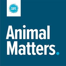 Animal Matters