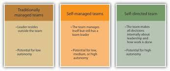 understanding team design characteristics team leadership is a major determinant of how autonomous a team can be