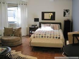 Modern One Bedroom Apartment Design Studio Living Room Big Living Ideas Studio Living Room Ideas