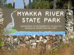 Image result for myakka river state park