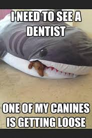 FunnyMemes.com • Cute memes - [I need to see a dentist] via Relatably.com