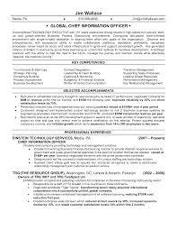 chief information officer cio resume ceo resum cto resume examples cio resume objective cio resume objective