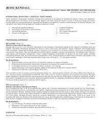 director operations resume   sales   director   lewesmrsample resume  sle of effective resume director business