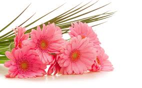 Image result for bouquet of flowers