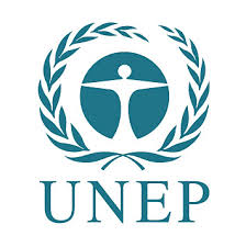 Image result for unep