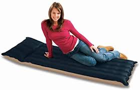 Intex Inflatable Fabric Camping Mattress with Built-In ... - Amazon.com