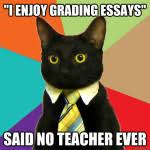 thoughts every teacher has while grading  whooos reading blog