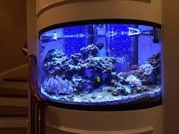 imagine aquarium office