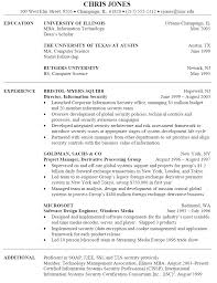information technology resume sample  itinformation technology resume sample