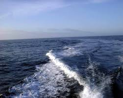 Image result for water wake