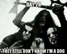 Metal Humour on Pinterest | Black Metal, Meme and Metals via Relatably.com