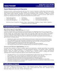 digital marketing resume example com digital marketing resume example com