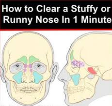 Clear-a-Stuffy-or-Runny-Nose-In-1-Minute.jpg