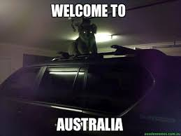 welcome to - australia - Creepy Koala | Aussie Memes via Relatably.com