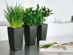 articles with plant pot stands indoor tag plant pot indoor design
