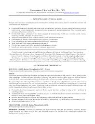 resume senior internal auditor resume sample resume senior internal auditor auditor resume examples for effective resume writing auditor resume sample indeed upload