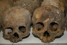 Image result for cannibalism victims
