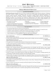 resume samples for executives cover letter s and marketing resume samples for executives resume objective sample human resources executive director resume samples executive ceo resum