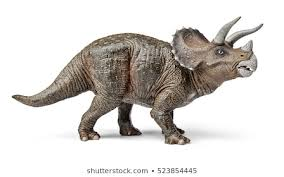 <b>Triceratops</b> Images, Stock Photos & Vectors | Shutterstock