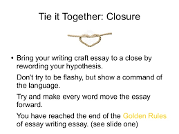 essay writing skills