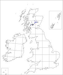 Veronica fruticans | Online Atlas of the British and Irish Flora