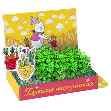 <b>Набор подарочный для</b> выращивания Веселые моменты ...
