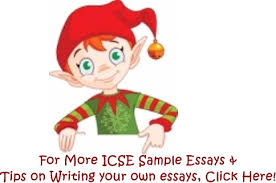 a wedding ceremony in the family  icse sample essays